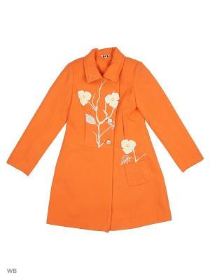 Пальто DESTY. Цвет: оранжевый