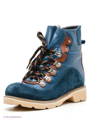 Ботинки Grand Gudini. Цвет: синий