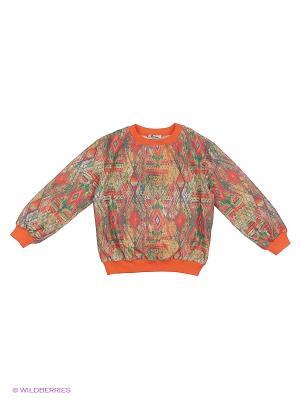 Джемпер LEMUR. Цвет: оранжевый