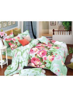 Постельное белье Vals Семейный Amore Mio. Цвет: зеленый, розовый