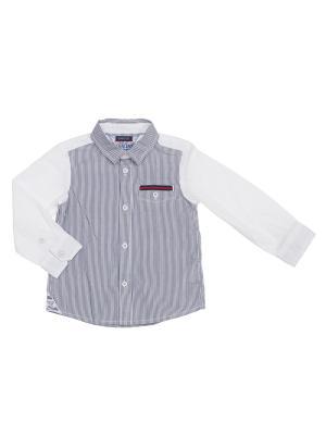 Рубашка CHICCO. Цвет: белый, синий