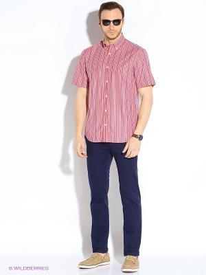 Рубашка Eden Park. Цвет: красный, белый, синий