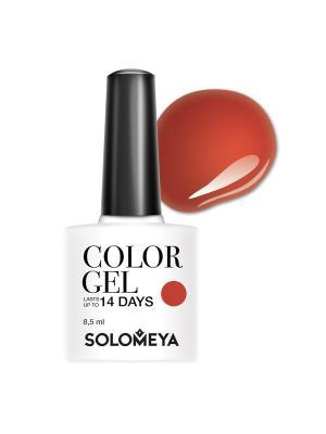 Гель-лак Solomeya Color Gel Aleera SCGK081/Алира. Цвет: персиковый