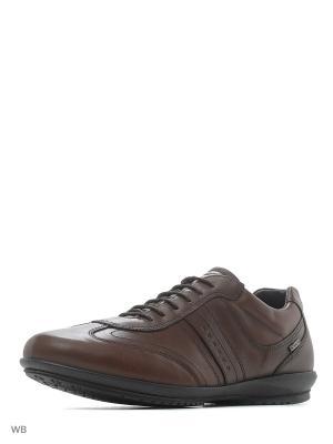 Ботинки IGI&CO. Цвет: темно-коричневый