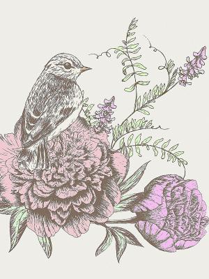 Наволочка Соловьи Матренин Посад. Цвет: серый, бежевый, розовый