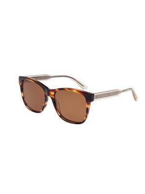 Солнцезащитные очки Bottega Veneta. Цвет: коричневый, светло-коричневый
