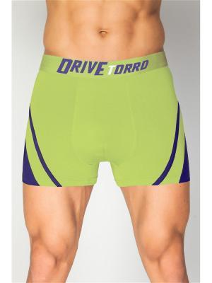 Трусы шорты мужские TORRO. Цвет: светло-зеленый