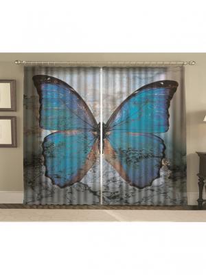 Комплект шторы, Мраморная бабочка 150*270 (2) + тюль МарТекс. Цвет: черный, голубой, синий