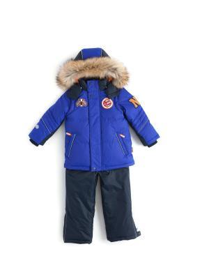 Комплект (куртка, полукомбинезон) NELS. Цвет: синий, темно-серый