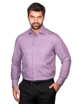 Рубашка BERTHIER. Цвет: серый, фиолетовый