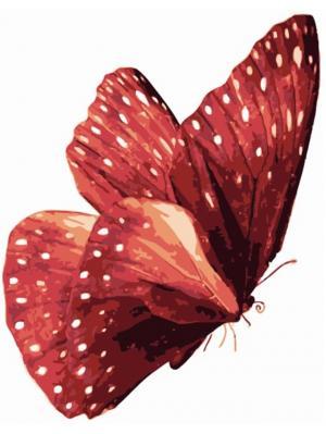 Раскраски по номерам Бабочка Красный монарх Цветной. Цвет: белый