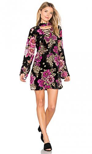 Платье со шнуровкой Band of Gypsies. Цвет: розовый
