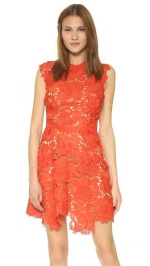 Кружевное платье Elina без рукавов Catherine Deane. Цвет: голубой