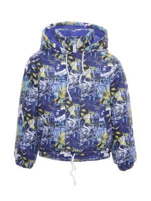 Куртка DAMY-M. Цвет: синий
