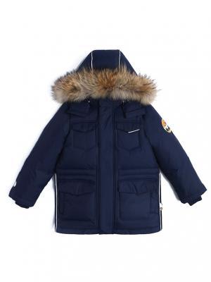 Куртка зимняя пуховая NELS. Цвет: темно-синий
