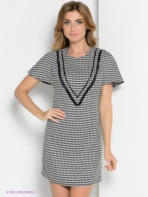 Платье ZAYKINS. Цвет: черный