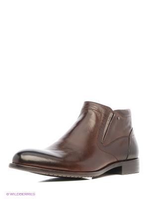 Ботинки Premier. Цвет: коричневый