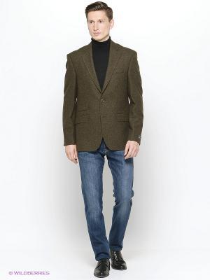Пиджаки DOUGLAS. Цвет: зеленый