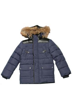 Куртка Arctic Goose. Цвет: navi