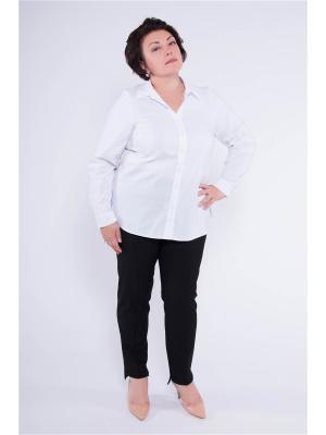 Блузка Pavlotti. Цвет: белый