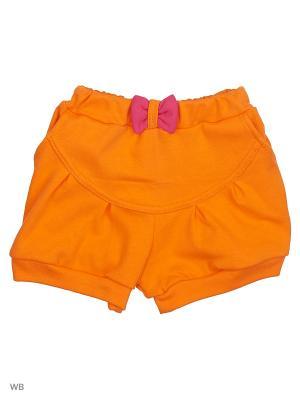 Шорты Genstaro Baby. Цвет: оранжевый, малиновый