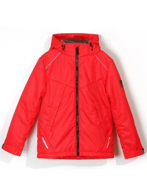 Куртка для мальчика AVESE. Цвет: красный