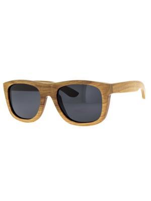Очки TM0080-G-6-TW WOOD TEHMODA. Цвет: коричневый