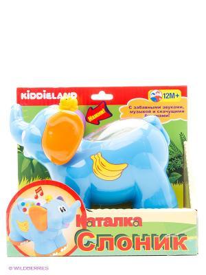 Развивающая игрушка  Каталка Слоненок Kiddieland. Цвет: голубой, красный, желтый