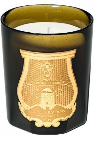 Ароматизированная свеча Трианон Cire Trudon. Цвет: бесцветный