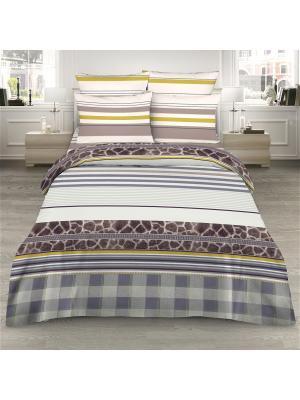 Комплект постельного белья из сатина 2 спальный Василиса. Цвет: серый, коричневый