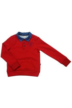 Джемпер MINI-MAXI. Цвет: бордовый