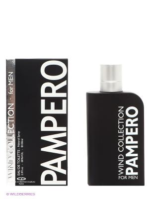 Туалетная вода Wind Collection Pampero, 100 мл CHRISTINE DARVIN. Цвет: черный