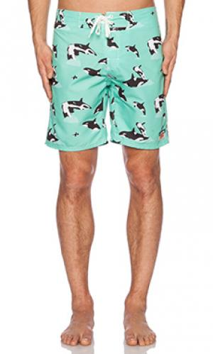 Плавательные шорты whilly Ambsn. Цвет: зеленый
