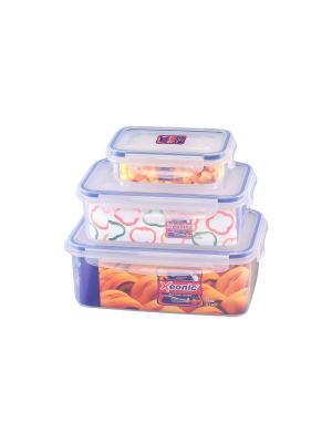 Набор 3 - х квадратных контейнеров, XEONIC CO LTD. Цвет: прозрачный, синий