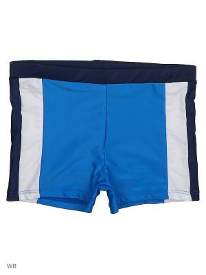 Плавки Modis. Цвет: темно-синий, синий, белый