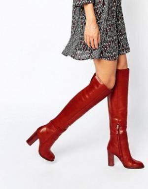 Sam Edelman Кожаные красно-бурые ботфорты на каблуке Rylan. Цвет: красный