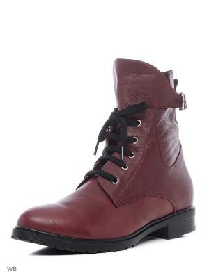 Ботинки NMNH. Цвет: бордовый