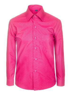 Рубашка Brostem. Цвет: малиновый