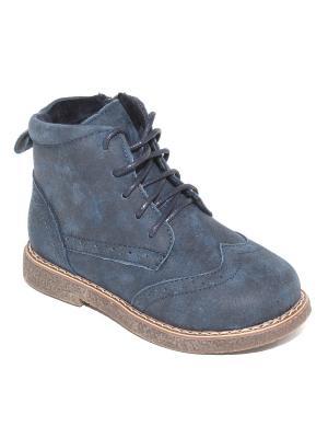Ботинки Капитошка.. Цвет: синий
