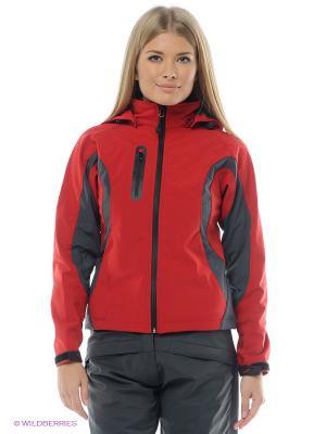 Куртка STORMTECH. Цвет: красный