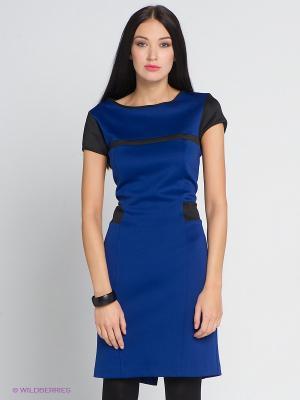 Платье COMPAGNIA ITALIANA. Цвет: синий, черный
