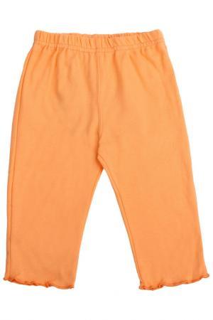 Леггинсы Carters. Цвет: оранжевый