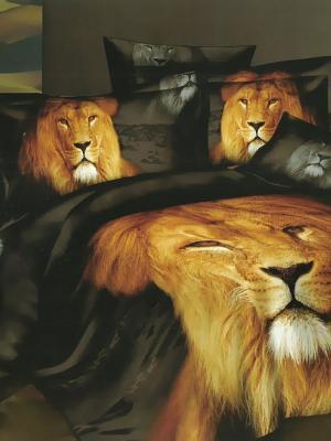 Комплект постельного белья, Лев, 1.5 спальный KAZANOV.A.. Цвет: черный, рыжий