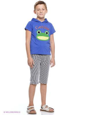 Комплект одежды Kidly. Цвет: синий, серый