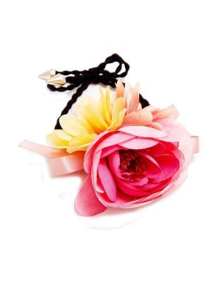 Резинка Kameo-bis. Цвет: розовый, желтый, кремовый