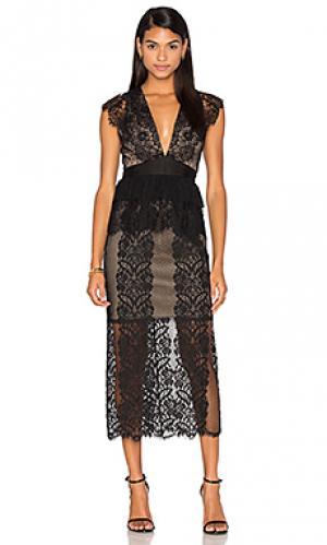 Платье миди lace affair Three Floor. Цвет: черный