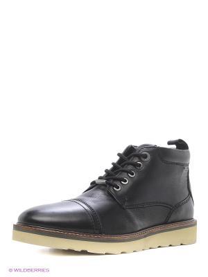 Ботинки PEPE JEANS LONDON. Цвет: черный