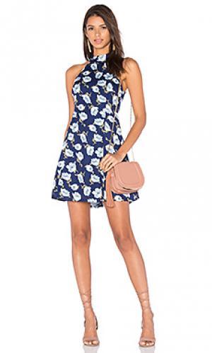 Мини платье adalynn Lucca Couture. Цвет: синий