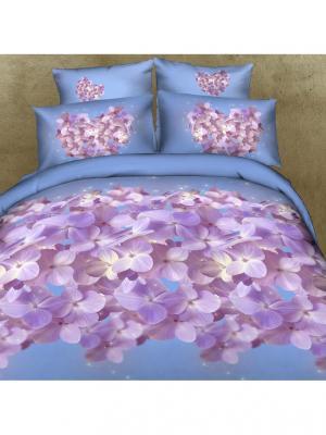 Постельное белье Nega Семейный Buenas Noches. Цвет: голубой, сиреневый
