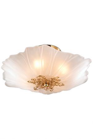Настенно-потолочный светильник ODEON LIGHT. Цвет: золотой, белый